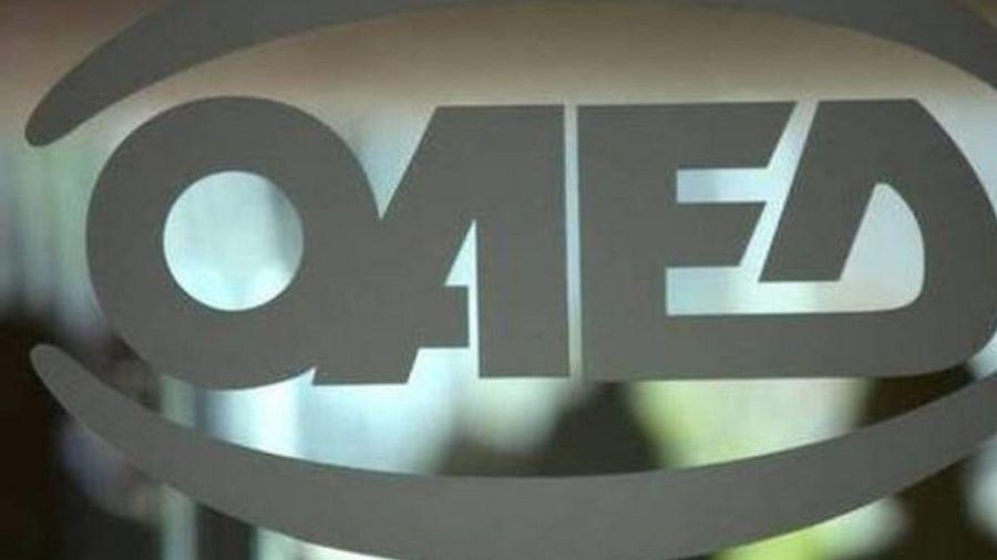 ΟΑΕΔ: Πάνω από 1.000 αιτήσεις για το πρόγραμμα απόκτησης εμπειρίας στο ψηφιακό μάρκετινγκ