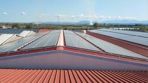 MGD Energy: Ολοκλήρωσε το φωτοβολταϊκού σταθμού ισχύος 1MWp της ΚΥΚΝΟΣ ΑΕ