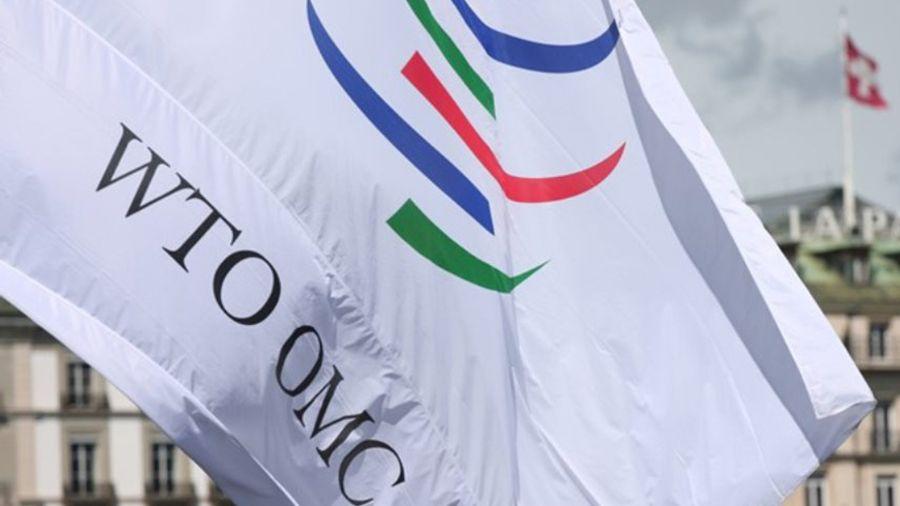 """Παγκόσμιος Οργανισμός Εμπορίου: """"Ιστορικά υψηλά επίπεδα"""" εμπορικών φραγμών από τις G20"""