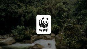 WWF: Ο κίνδυνος για την εμφάνιση νέων πανδημιών παραμένει υψηλός όσο δεν λαμβάνονται μέτρα