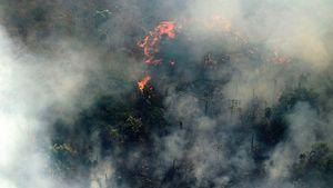 Η καταστολή δασικών πυρκαγιών σε σχέση με την πρόληψη έχει ένα τεράστιο οικονομικό κόστος