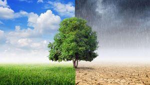 Ημερίδα της Περιφέρειας Αττικής για την κλιματική αλλαγή στο Μουσείο Της Ακρόπολης