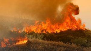 Πολύ υψηλός κίνδυνος πυρκαγιάς στην Αττική την Τετάρτη