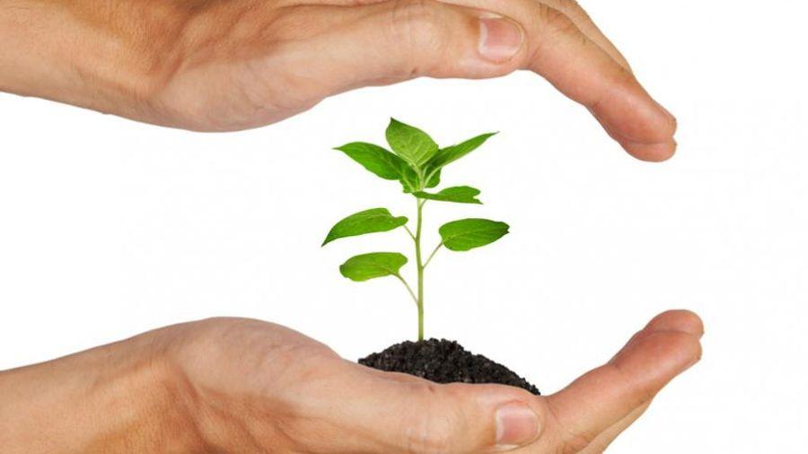 Πρότυπες Περιβαλλοντικές Δεσμεύσεις σε κτιριακά έργα