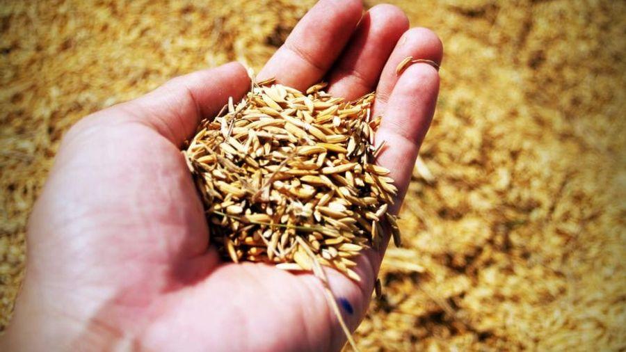 Ενισχύσεις συνολικού ύψους 122 εκατ. ευρώ καταβλήθηκαν στους αγρότες