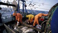 Συμφωνία για τη νέα Κοινή Αλιευτική Πολιτική