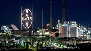 Bayer: Αποζημίωση μαμούθ για το ζιζανιοκτόνο Roundup