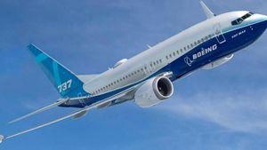 WSJ: Η πτώση του 737 Μax ίσως οφείλεται σε πρόσκρουση πτηνών