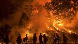 Καλιφόρνια: Στους 44 οι νεκροί από την φονική πυρκαγιά