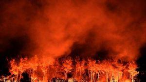 Πορτογαλία: Εκτός ελέγχου η φωτιά-Φόβοι για 100 νεκρούς-Τριήμερο εθνικό πένθος