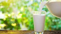 Δώρο ζωής το γάλα στον εαυτό μας θυμίζει ο ΣΕΒΓΑΠ με αφορμή την Παγκόσμια Ημέρα Γάλακτος