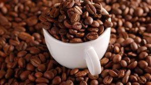 Οργιάζει το λαθρεμπόριο στον καφέ μετά την επιβολή του Ειδικού Φόρου Κατανάλωσης