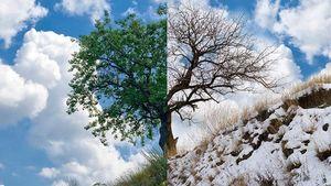 Καιρός: Χιόνια στη Μακεδονία, 32 βαθμοί στην Κρήτη