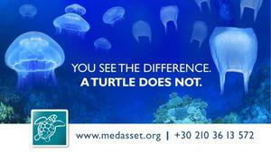 "MEDASSET: Η έκθεση ""Healthy Seas Fashion Project"" μεταφέρεται στην Κρήτη"