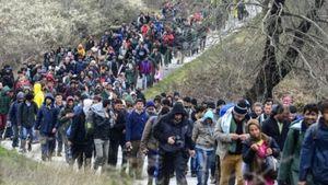 Ευρωπαϊκό Κοινοβούλιο: Νέο ευρωπαϊκό ταξιδιωτικό έγγραφο για την επιστροφή παράνομων μεταναστών