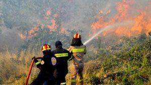 Πυρκαγιά σε δασική έκταση στην Αρκαδία