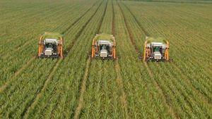 Στροφή στα συμβόλαια γεωργίας