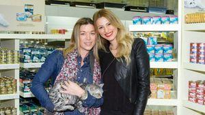 Η 1η GOURMET boutique για γάτες από τη PURINA