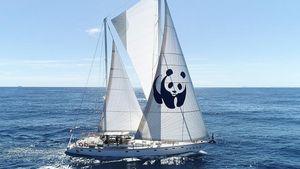"""Το ιστιοπλοϊκό σκάφος WWF """"Blue Panda"""" φτάνει στο Ιόνιο"""