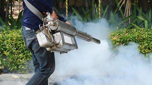 Συνεχίζεται το πρόγραμμα καταπολέμησης των κουνουπιών