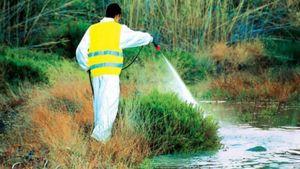 Ξεκίνησαν οι ψεκασμοί για την καταπολέμηση των κουνουπιών
