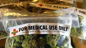 Κομισιόν: Στηρίζει τα οφέλη από την ιατρική χρήση κάνναβης