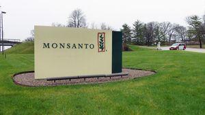 Monsanto: Πρόστιμο 290 εκατ. δολαρίων για το ζιζανιοκτόνο Roundup