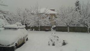 Θεόδωρος Κολυδάς: Ελαφρύτερος ο χιονιάς από το αναμενόμενο