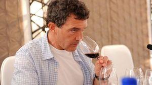 Οι business των stars: Ο Antonio Banderas «πρωταγωνιστεί» στον κλάδο του κρασιού