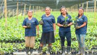 Η Chiquita γιορτάζει την Παγκόσμια Ημέρα της Γυναίκας