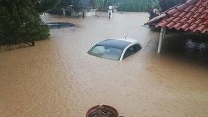 """ΕΑΕΕ: Ξεπερνούν τις 2.000 οι δηλωμένες ζημιές από την κακοκαιρία """"Ιανός"""""""