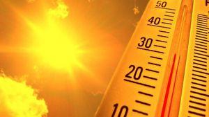 Ε.Ε.: Ο Νοέμβριος του 2020 ήταν ο πιο ζεστός παγκοσμίως