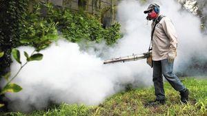 Ξεκινούν οι ψεκασμοί για τα κουνούπια στην Αττική – Οι πρώτες περιοχές