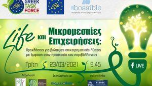 Διαδικτυακή Θεματική Ημερίδα: «Χρηματοδοτικό Πρόγραμμα LIFE και Μικρομεσαίες Επιχειρήσεις»