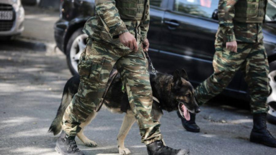 Οι ένοπλες δυνάμεις ζητούν στρατιωτικούς σκύλους