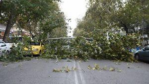 Διακοπή κυκλοφορίας στην Αττική λόγω πτώσης δέντρων